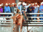 Wild Thing returns to Red Rock, sets tone for rodeo season